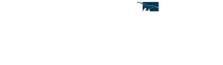 Stanmore Logo White 450px