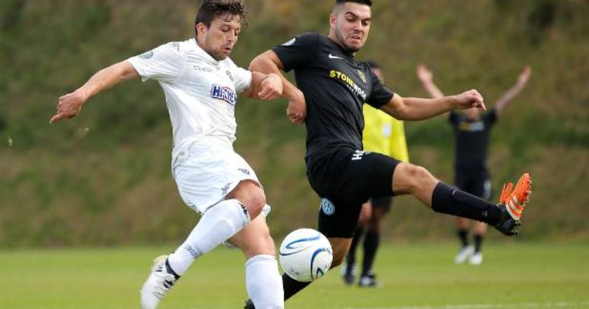 Team Wellington captain Justin Gulley back from All Whites duty for final